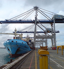 k_crane_visit_zpmc_in_ports_of_auckland_
