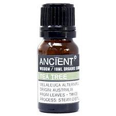 OrgEO-02 Tea Tree Organic Essential Oil