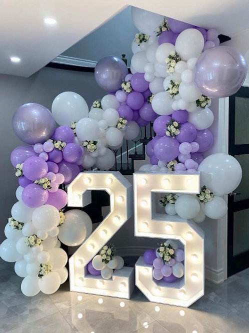 4 ft Light Up Numbers (2)