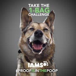iams-proo-in-the-poop