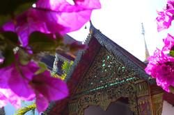 Antoine Roulet-Thailand-Wat Doi Suthep-05.jpg