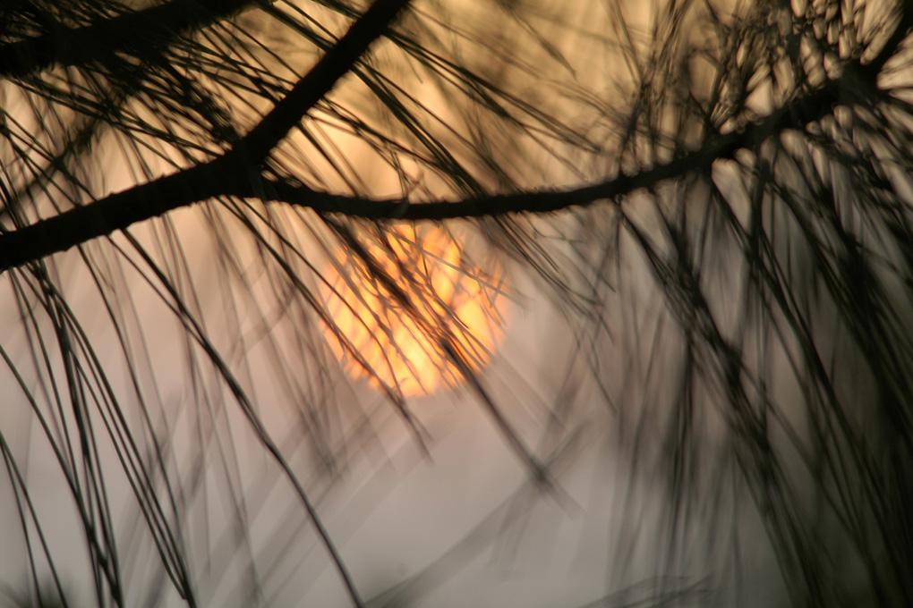 72-Coucher de soleil à Nagarkot.jpg