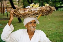 India- Man with bananas plate.jpg