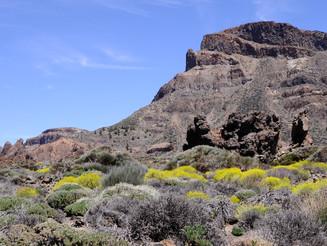 Le mont Teide sur l'île de Tenerife