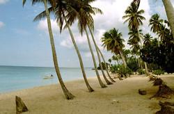 Antoine Roulet-Santo Domingo-beach-07.jpg