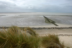 5-Bercq-sur-mer-462-dunes plage.jpg