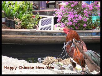 Joyeuse année du coq