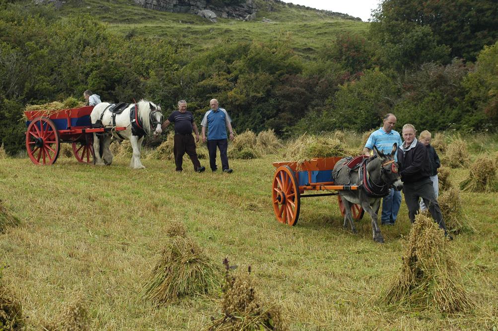 ©Antoine_Roulet-Ireland-292-carriole