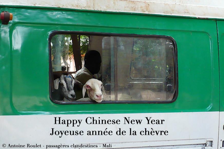Antoine_Roulet-Chèvres_bus_Mali.jpg