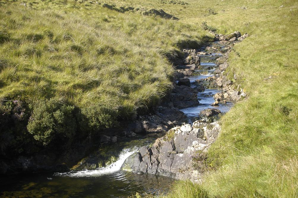 ©Antoine_Roulet-Ireland-ruisseau