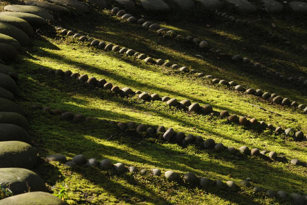 © Antoine Roulet-Jardin japonais