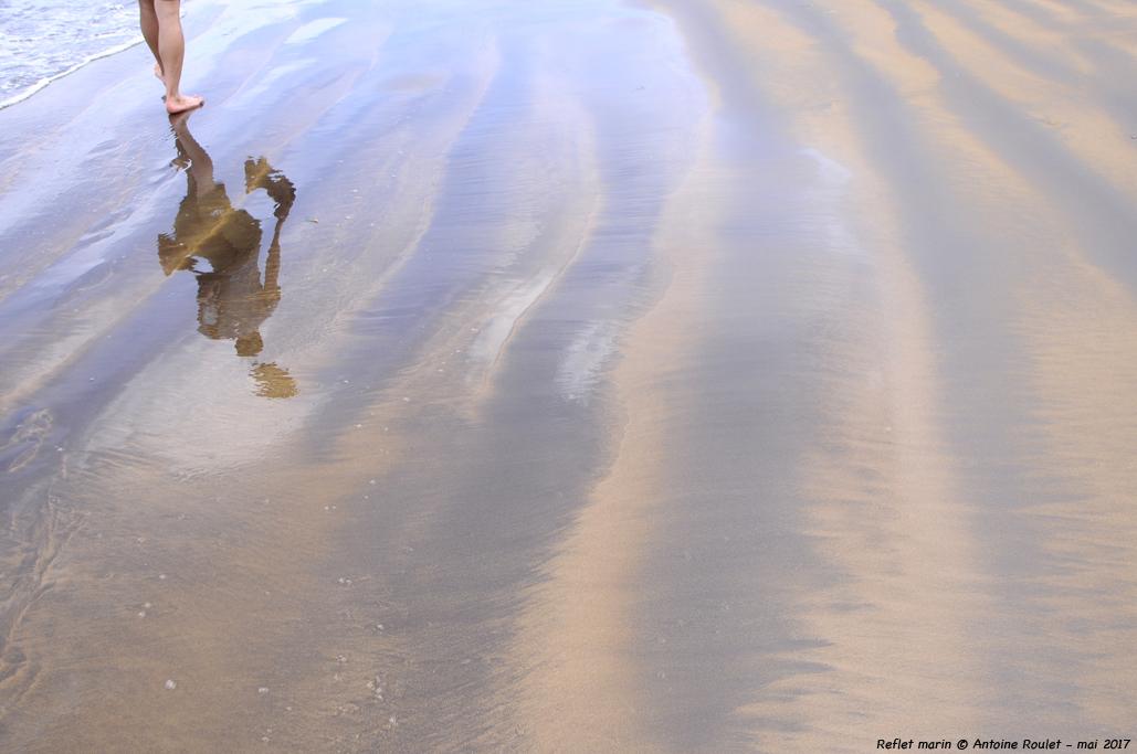 ©Antoine Roulet-Reflet marin