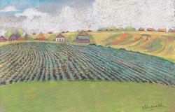 Картофельное поле. 1931