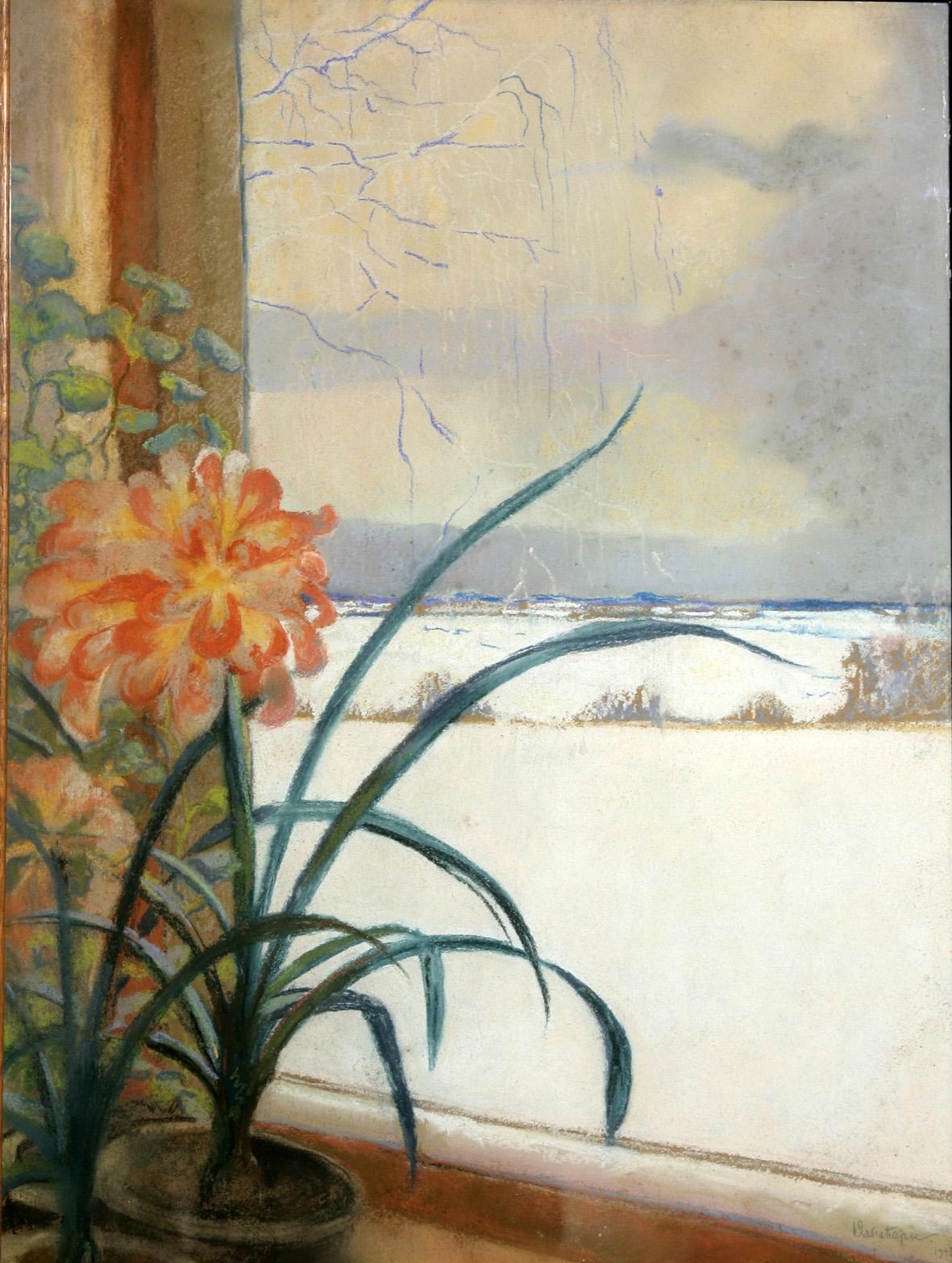 Амарилисы. Райки. 1913