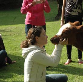 Contacta y Sana con animales