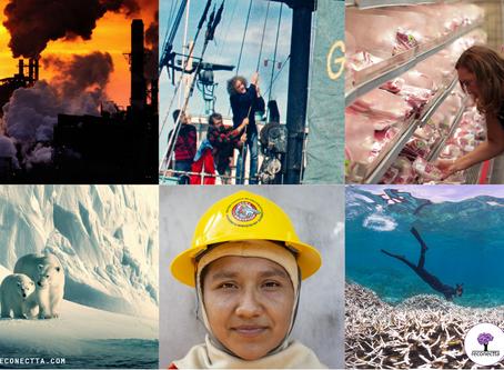 6 documentários para nos inspirar a construir um mundo mais sustentável!