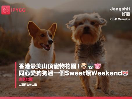 【Jengshit 好西】香港最美山頂寵物花園!🐶🐱🐷同心愛狗狗過一個Sweet爆Weekend😻