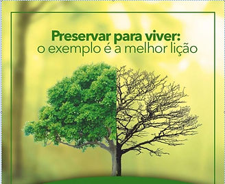 7 - PRESERVE O MEIO AMBIENTE - IMAGEM 10