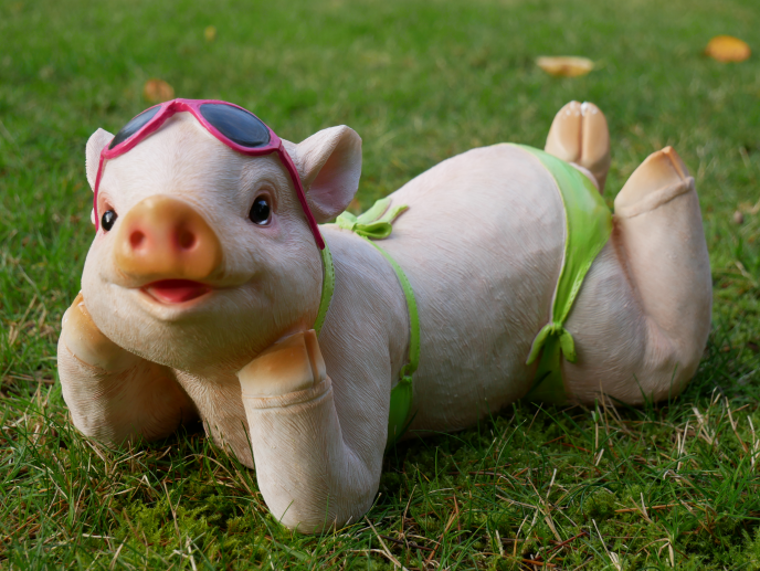 Pig In Bikini