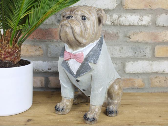 Bulldog in Suit