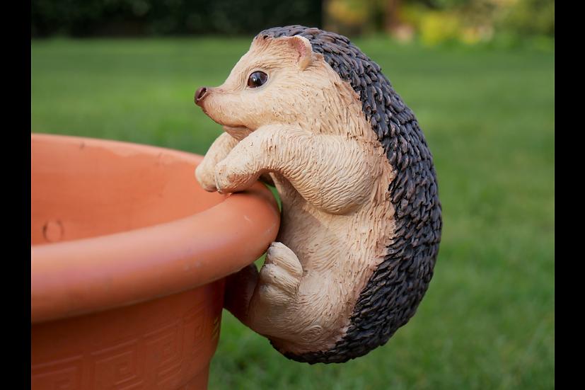 Pot Hanging Hedgehog