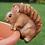 Thumbnail: Pot Hanging Squirrel