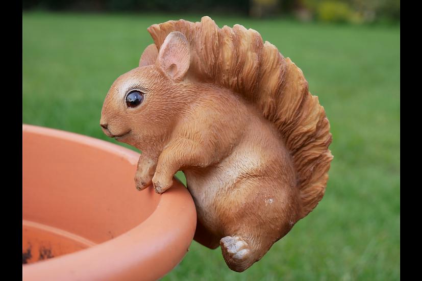 Pot Hanging Squirrel