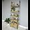 Thumbnail: Ladder Style Shelves