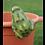 Thumbnail: Pot Hanging Frog