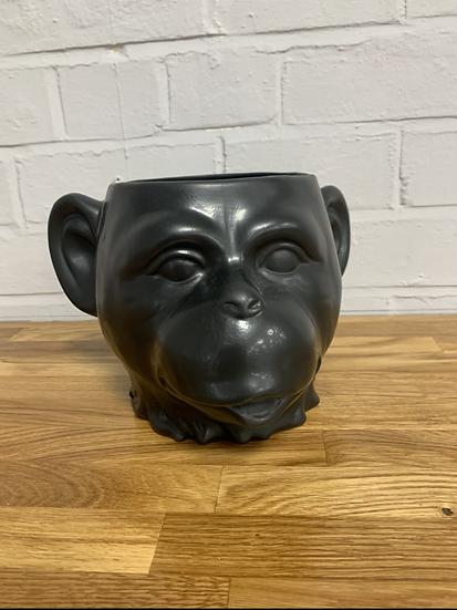 Monkey Head Planter