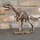 Thumbnail: Dinosaur