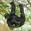 Thumbnail: Climbing Gorilla