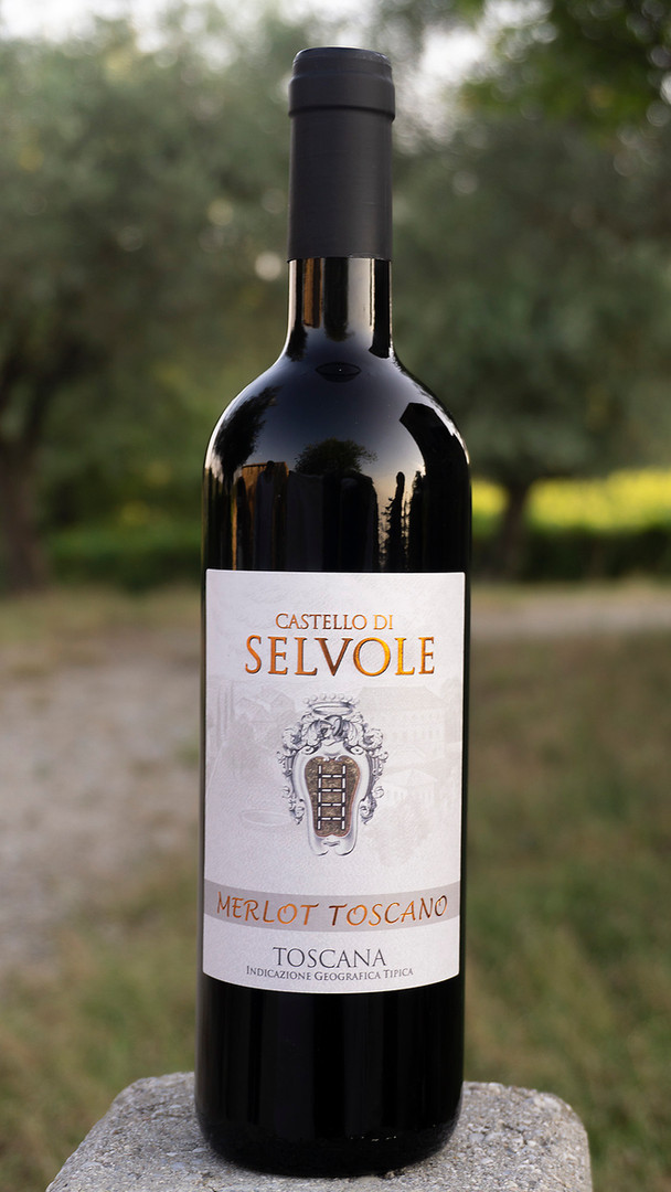 Merlot Toscano IGT Selvole