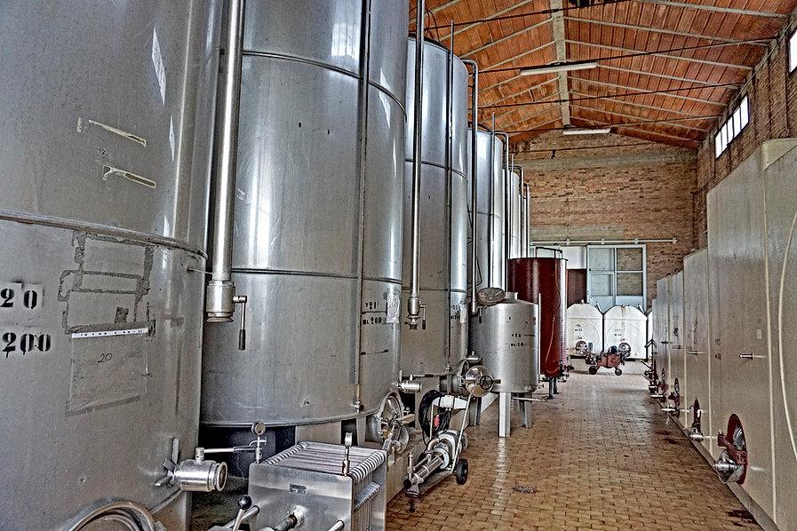 Winery7.JPG