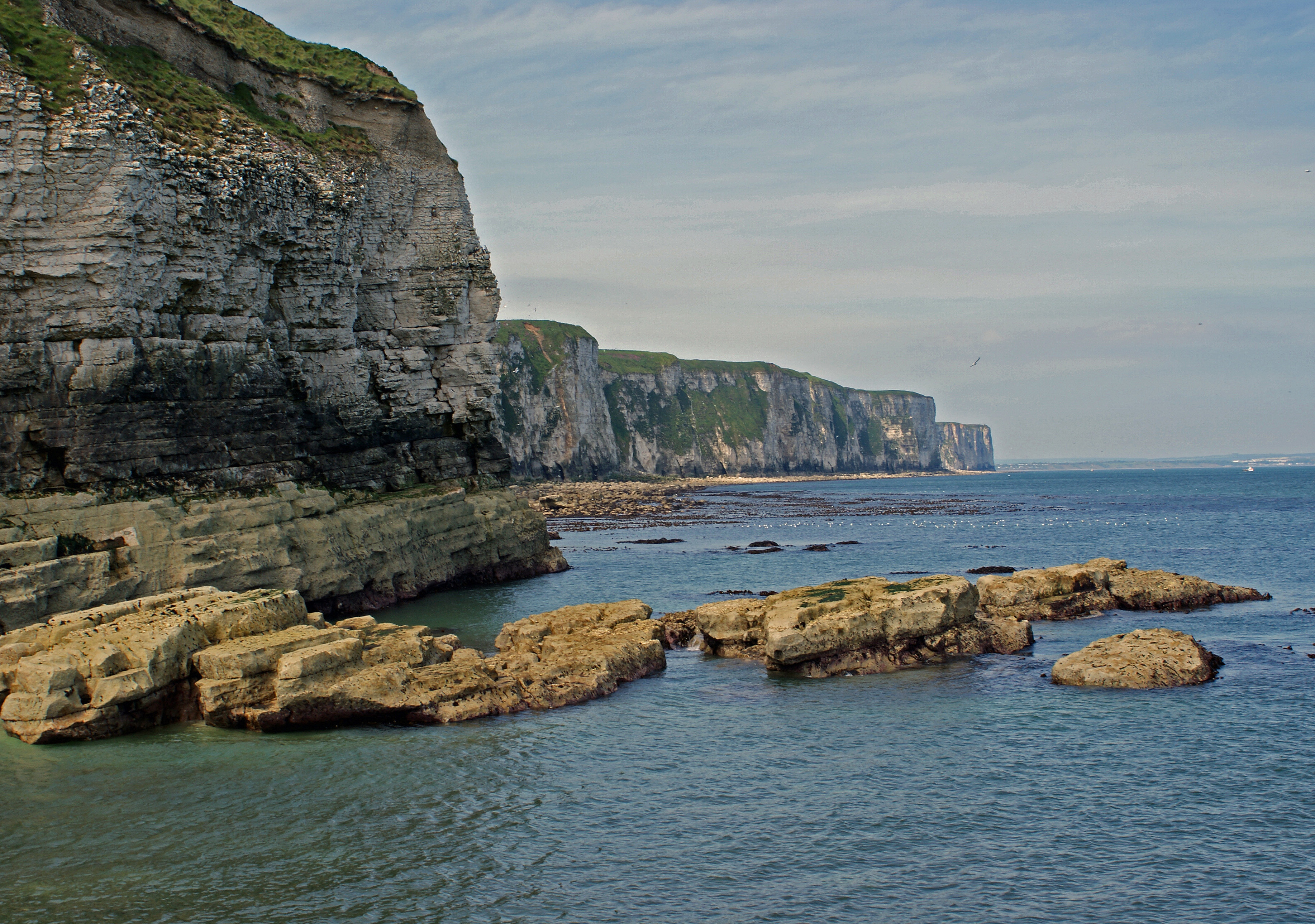 Thornwick Bay cliffs