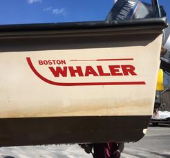 Boston Whaler- Color Restoration