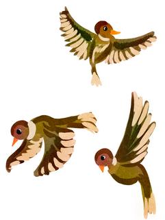 Bird_Layers.png