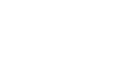 bluehawk-white-logo.png