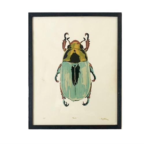 """Beetle, 22x28"""""""