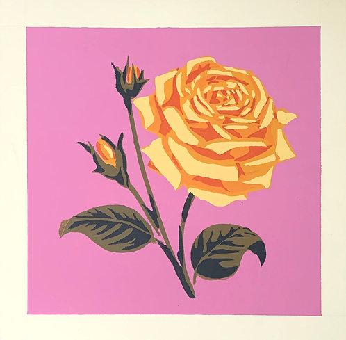 "Yellow Rose, 14x14"""