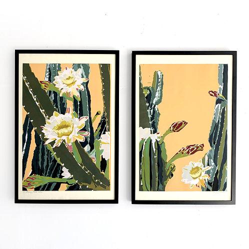"Blooming Cereus Diptych on Ochre, 30x40"""