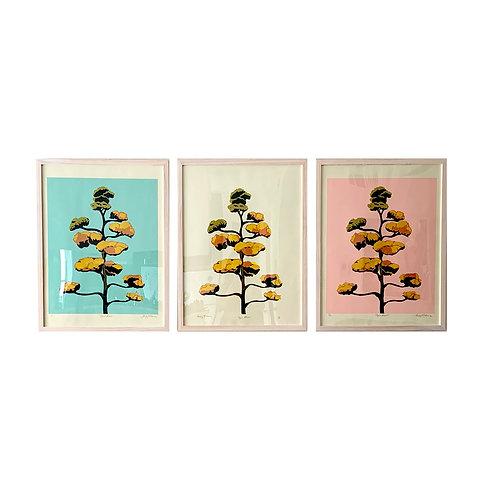 Agave Bloom Stencil Prints