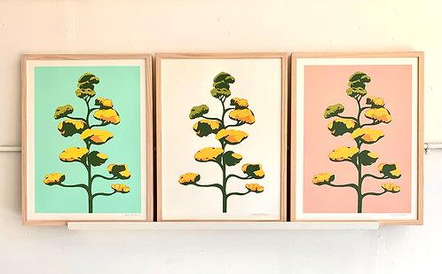 Agave Bloom Screenprints, 18x24