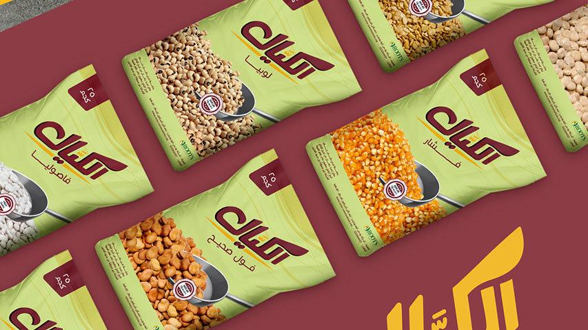 ElKayal-Presentation_12.jpg
