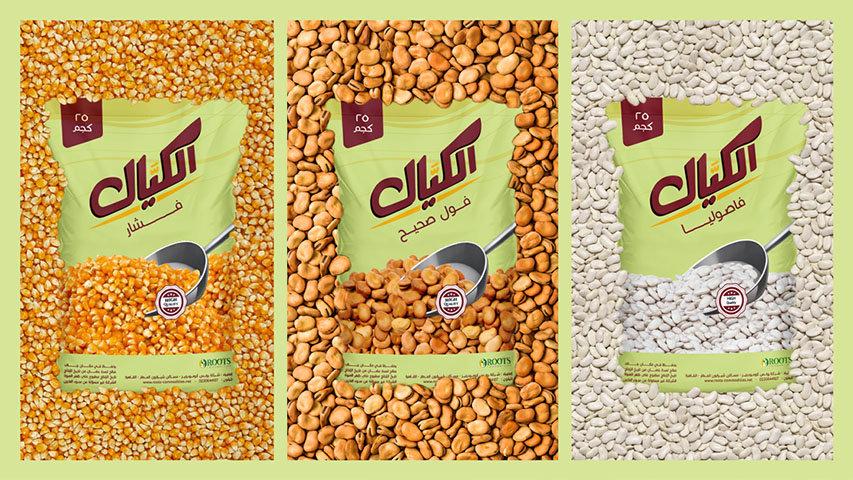 ElKayal-Presentation_07.jpg