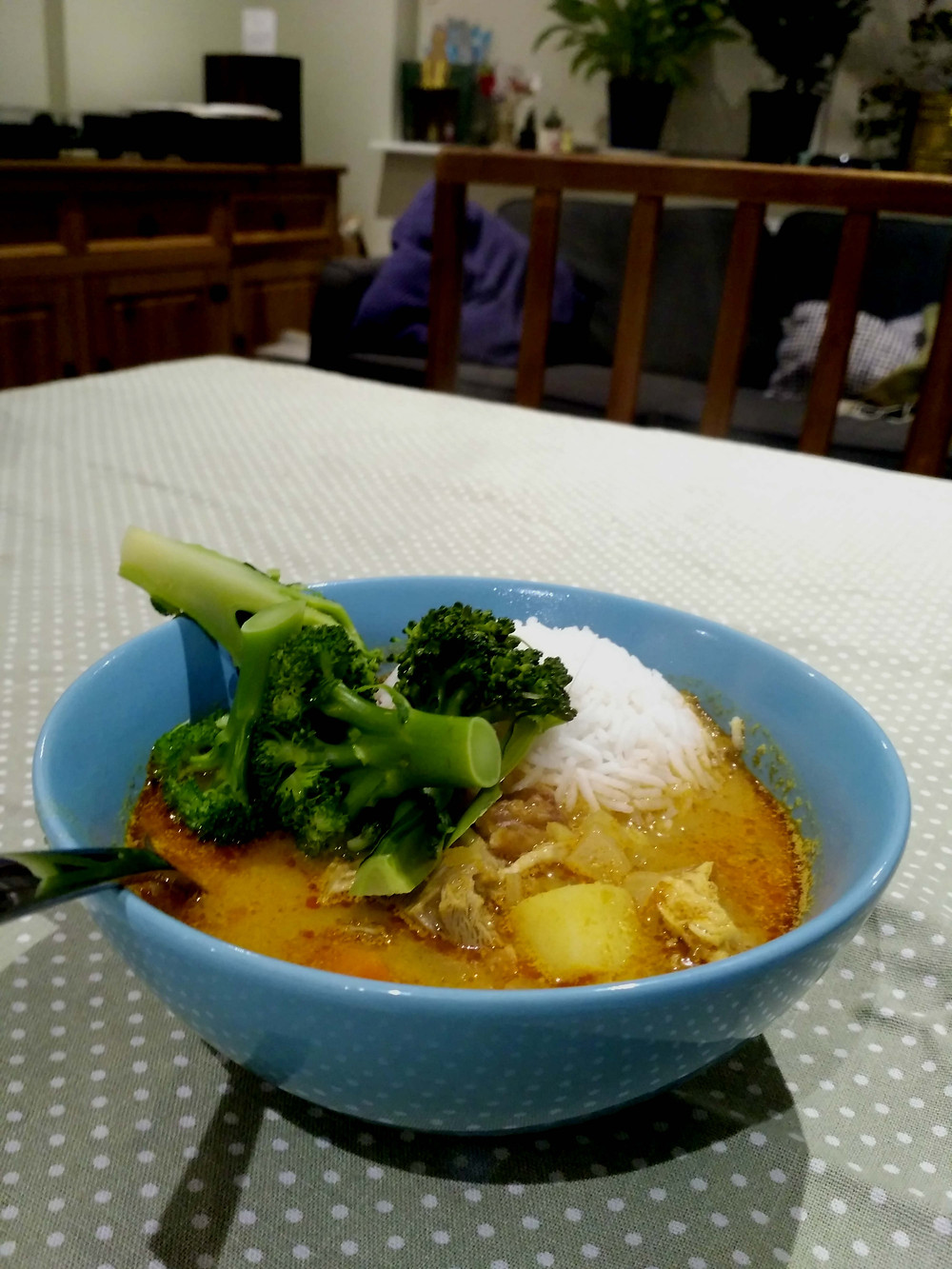 Picture of turkey Malaysian curry