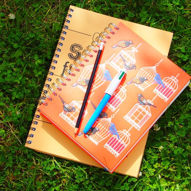 Wellness & fertility coaching and journalling