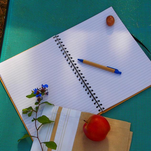 Wellness coaching and journalling