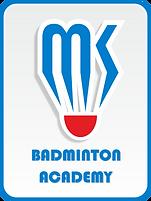 Логотип акадмии бадминтона Майоровой К.Г.