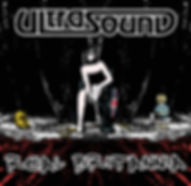 ultrasound cd cover